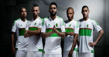 Verts-1-1